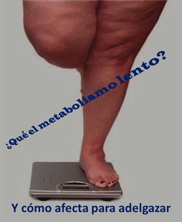 ¿Qué es el metabolismo lento? Y cómo afecta para adelgazar