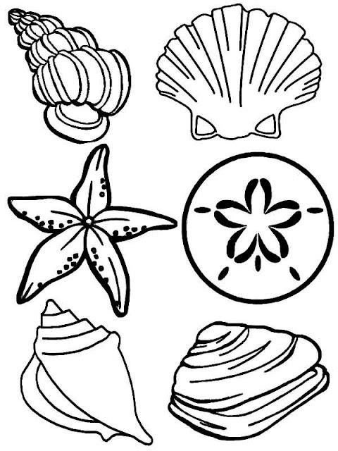 coloriage coquillages et crustacés