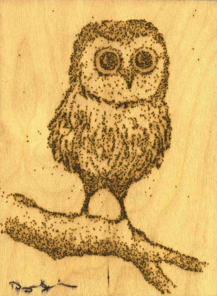 07-Baby-Owl-Danny-Sherving-Paint-with-Gunpowder-and-then-set-it-on-Fire-www-designstack-co