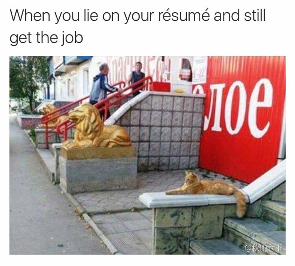 when you lie on your resume and still get the