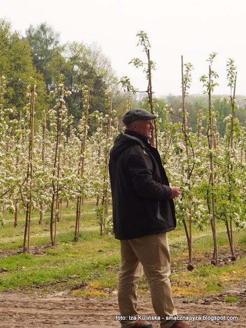 jablka, mala wies, jablka grojeckie, polski produkt, dobre bo polskie, tak smakuje piekno, sad jabloniowy, jablonie, lidl, wycieczka do sadu