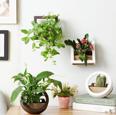 Cool Wall Planter