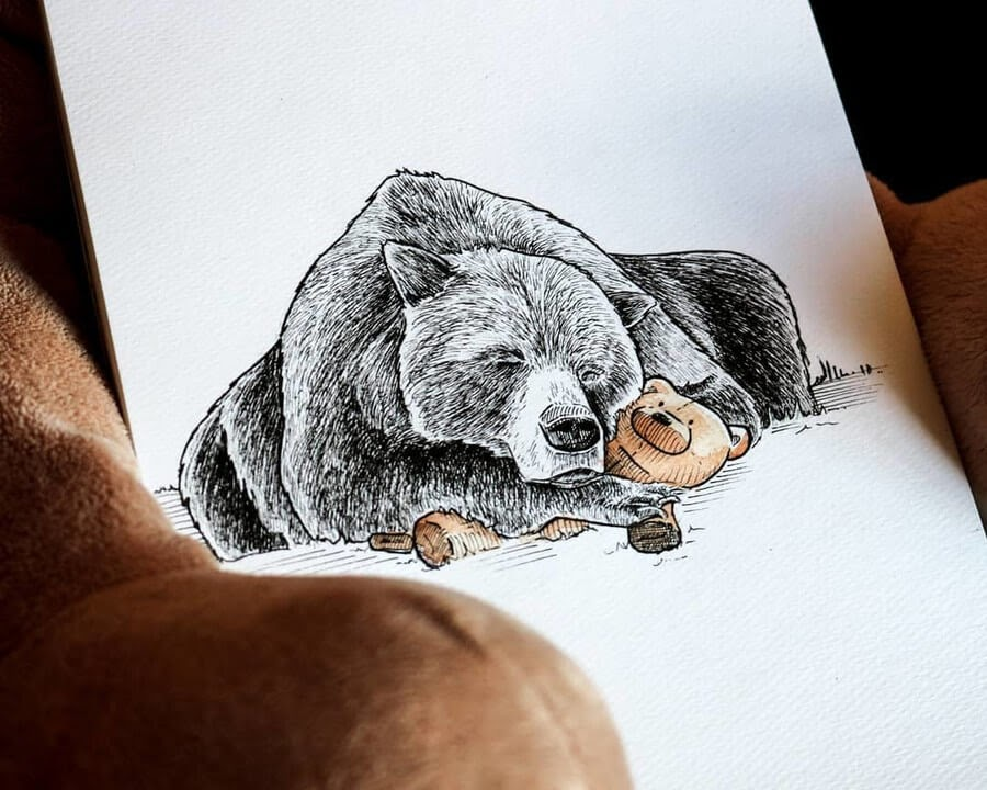 04-Grizzly-bear-Diana-Sofia-Animal-Drawings-www-designstack-co