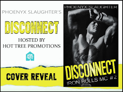 HOT new cover for Disconnect by Phoenyx Slaughter