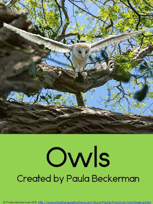 https://www.teacherspayteachers.com/Product/Owls-2071310