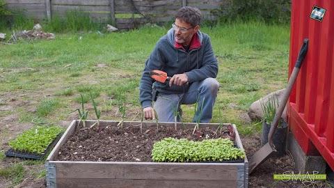 Jardines y Huertas: el cuidado del medio ambiente