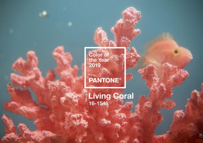 Color Pantone para el año 2019, Living Coral