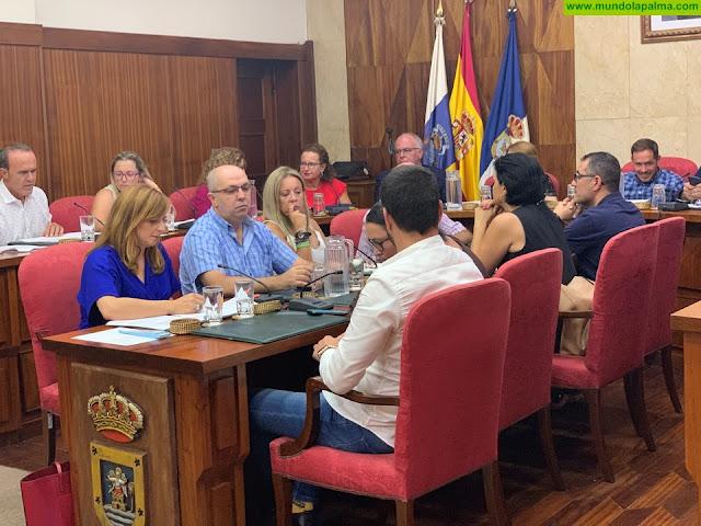 """Nieves Lady Barreto: """"Salimos del pleno del Cabildo preocupados y decepcionados por la falta de medidas y la acritud del grupo de Gobierno"""""""