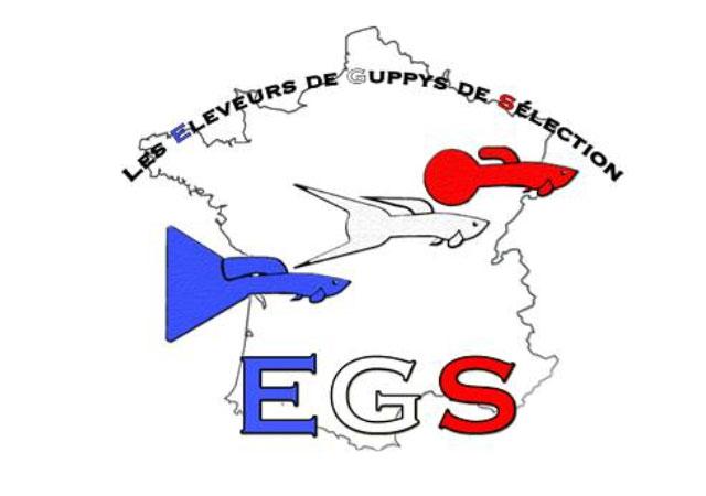 Association des Éleveurs de Guppys de Sélection [EGS]