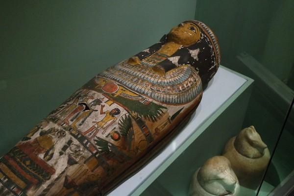 brighton museum momie mummy