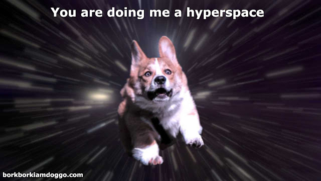 Doggo In Hyperspace