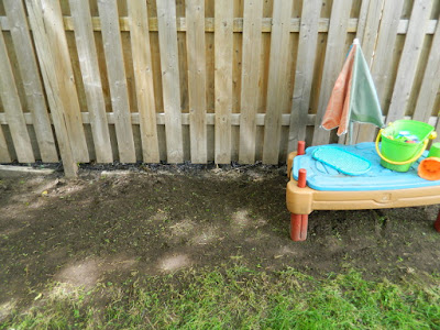 Beach Hill Toronto backyard cleanup after by Paul Jung Gardening Services