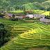 Sapa Hard Trekking To Ban Ho Village