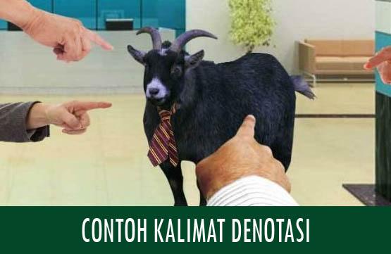 Contoh Kalimat Denotasi