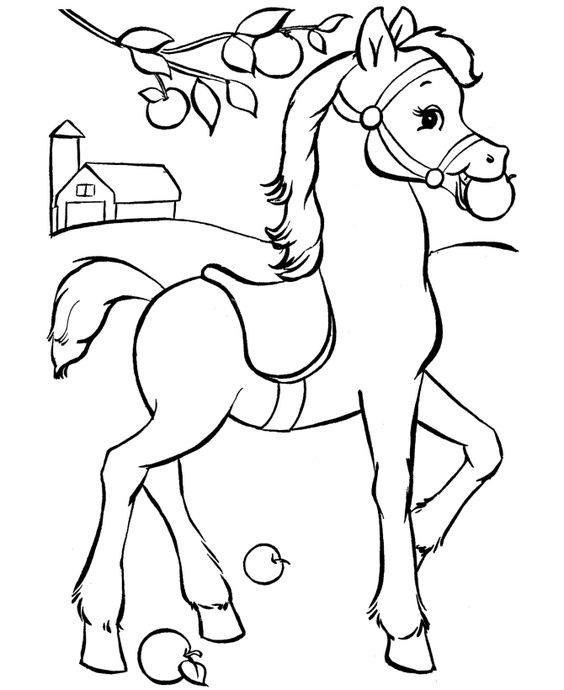 Tranh tô màu con ngựa ăn táo