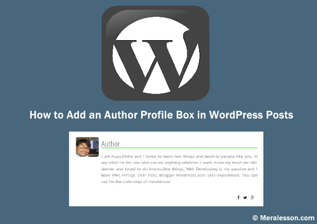 How To Add An Author Profile Box In Wordpress Posts Meralesson