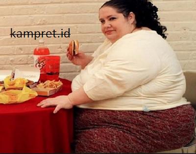 http://www.kampret.id/2016/11/ternyata-penyebab-gemuk-bukan-hanya-banyak-makan-saja.html