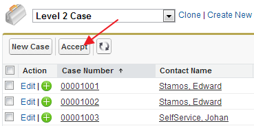 SimplySfdc com: Salesforce: Accept Queue in Page Layout