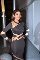 Pranitha Subhash in a skin tight backless brown gown at 64th Jio Filmfare Awards South ~  Exclusive 087.JPG