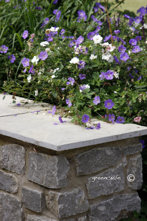 Greencube garden and landscape design uk for Xd garden design
