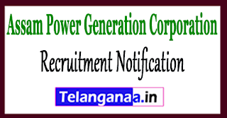 APGCL Assam Power Generation Corporation Recruitment Notification 2017