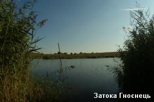 Затока Гноєнець