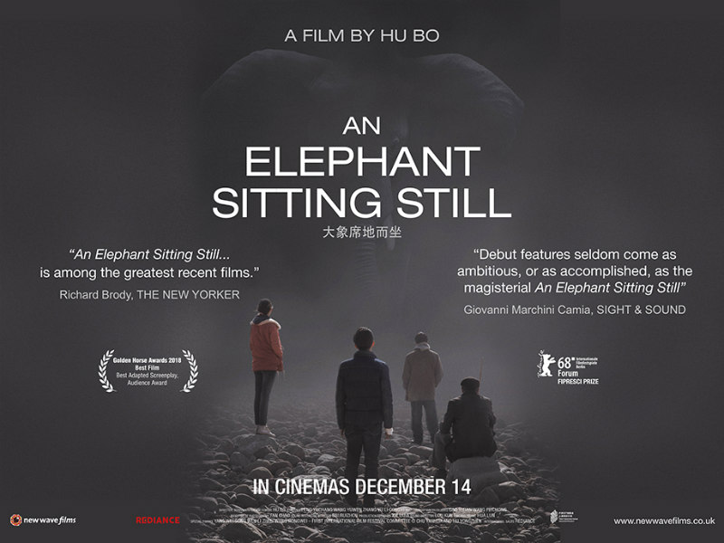 An Elephant Sitting Still poster
