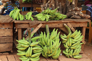 Plantains on sale at market in Ibadan Nigeria