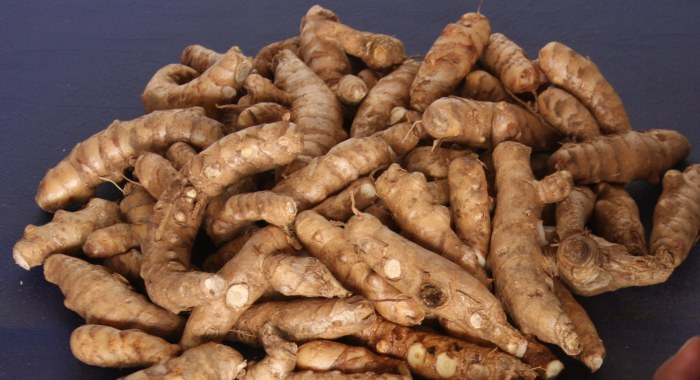 Rizomas de M. arundinacea (Siempredulces) - Fotografía tomada de iwnsvg.com