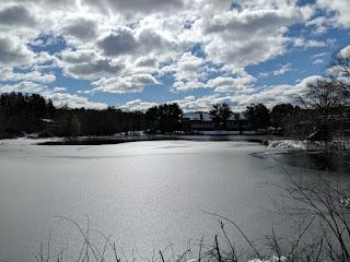 sunshine on Spruce Pond