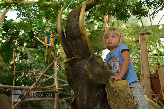Atrakcje dla dzieci Market Dome w Center Parcs Bispinger Heide.