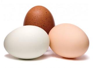 7 Fakta Seputar Telur yang Kini Terungkap