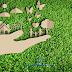Meio Ambiente | Futuro Incerto