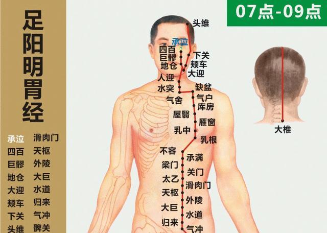 """養顏的經絡穴位:""""二本""""""""三脈""""""""一經""""(皮膚光澤)"""