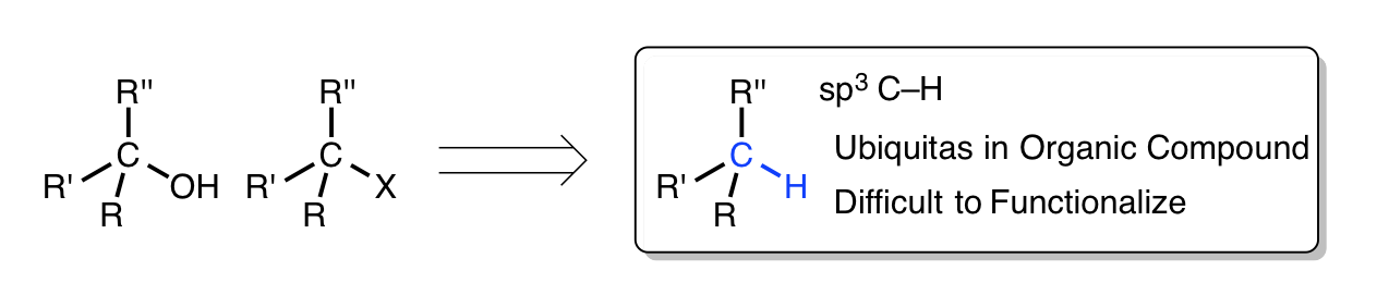 c h functionalisation Two methods of c-h functionalisation of sp2 c-h bonds via ruthenium catalysis have been developed in this thesis the first methodology is.