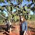 Entrevista: Professora Ma. Keile Beraldo (UFT) fala sobre agroecologia e avanços nos estudos sobre práticas agroecológicas no Tocantins.