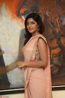 Eesha Rebba in beautiful peach saree at Darshakudu pre release ~  Exclusive Celebrities Galleries 042.JPG