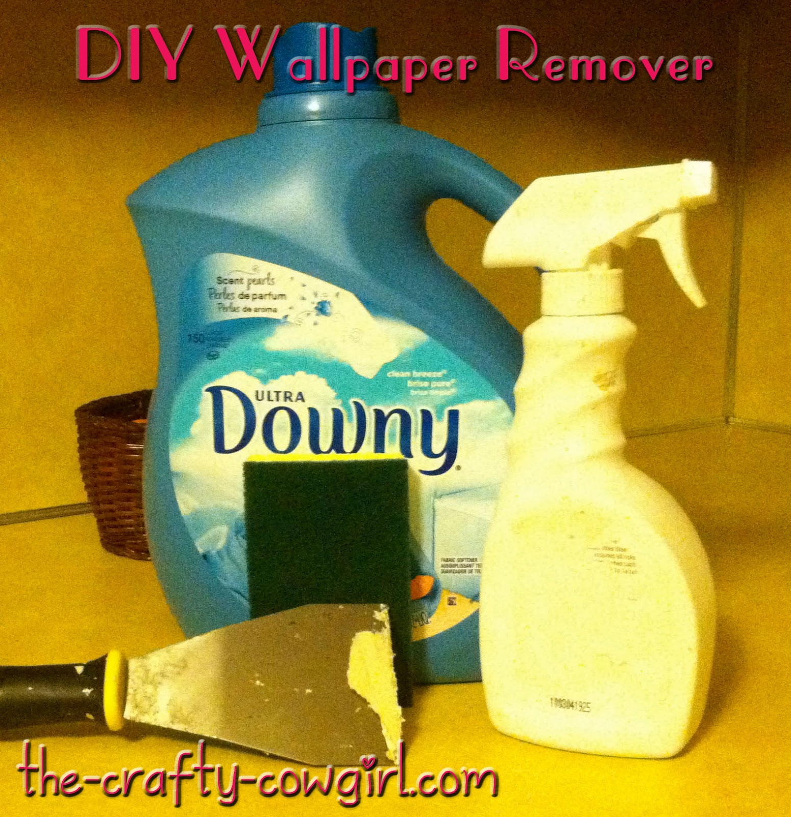 all new pix1: Dif Gel Wallpaper Remover
