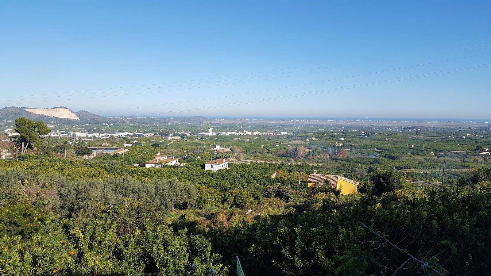Pego-Oliva Marshes, Pego, Alicante