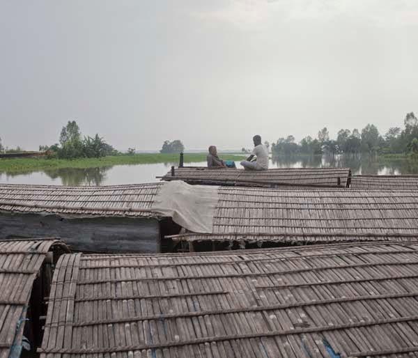 chhotahazri: August 2014