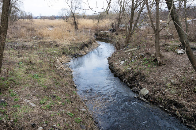 річка Немишля