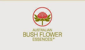 http://www.bushflower.it/