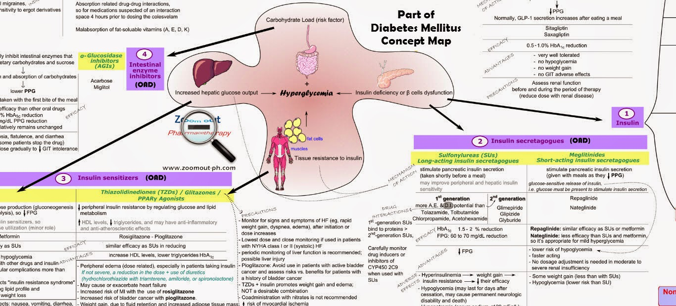 Diabetes Mellitus - Pathophysiology and treatment map
