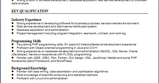 software developer resume pattern in word format free download
