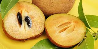 sapodilla(chikoo) health benefits in urdu