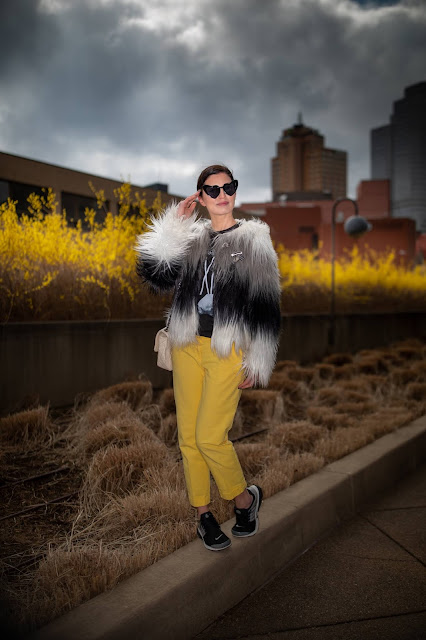 black and yellow, forsythia, Pittsburgh blogger