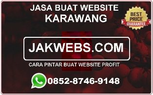 JASA PEMBUATAN WEBSITE DI KARAWANG