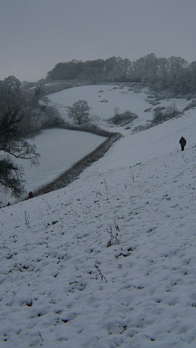 Snowy in Chudleigh, Devon, Britain