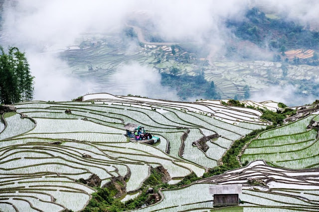 12 Months, What Did You Miss in Sapa? 6