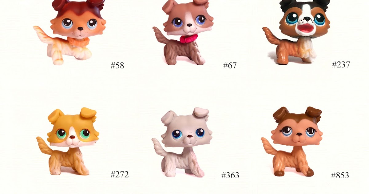 Pet Shorthair Cat Numbers Littlest Shop All
